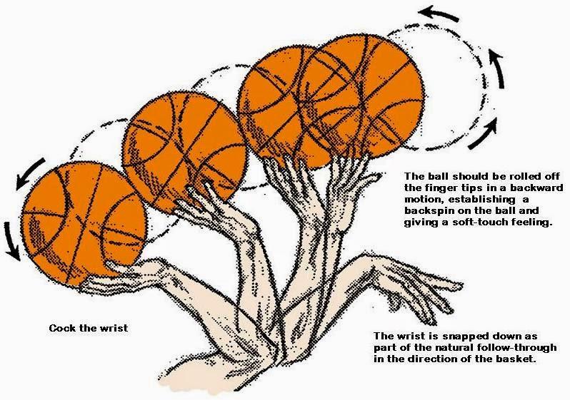 Basketball Science | KiwiCo