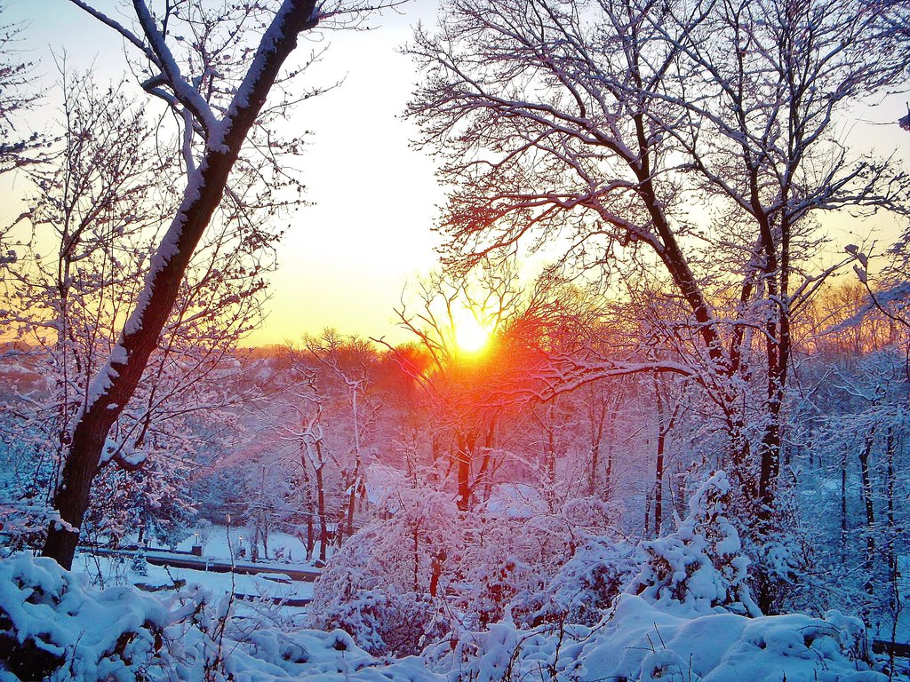 winter_sunrise_by_admiralmichalis-d6xs080