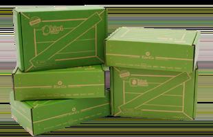 Kiwi Camp (5-Pack) pack image